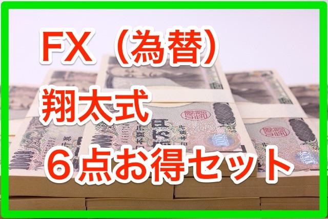 FX(為替)翔太式6点お得セット