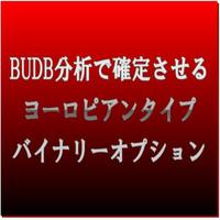 BUDB分析で確定させる ヨーロピアンタイプ バイナリーオプション